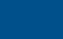 OBN_ID_BLUE_PMS294_CMYK