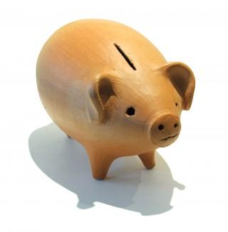 Piggy Bank-348608_2617